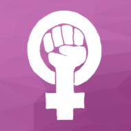 feministischer verein kanton solothurn